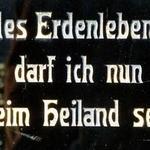Die-Klostermaus