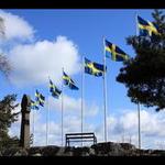 schwede2