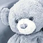 Teddy_Boo